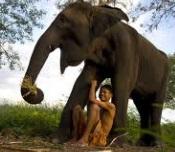 otpysk-y-slonov